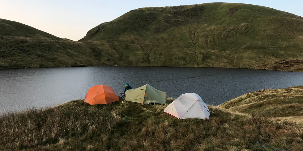 Wild Camp Out