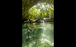 Maya Aventuras Cenote