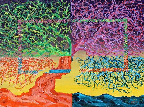 Oak (quadra-colored)