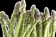 legume1.png