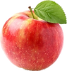 pomme1.png