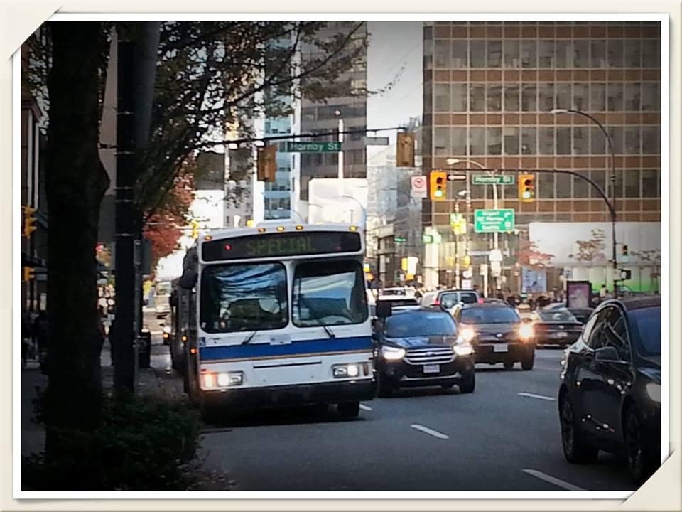 bus DT.jpg