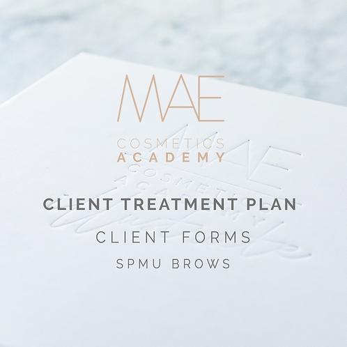 Client Treatment Plan Form