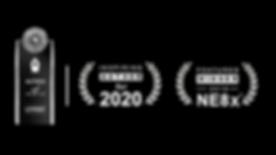 NE8x Web Badge 2019.png