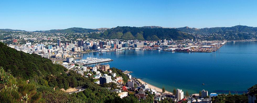Wellington_Panorama_View.jpg