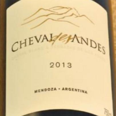 Cheval des Andes