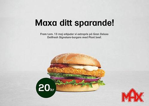 max_5.jpg