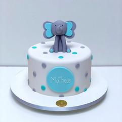 Elefante Matheus