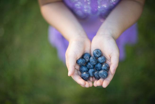 blueberry-BY3GJUW.jpg