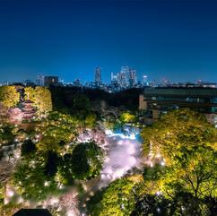 ホテル椿山荘東京の桜を撮影しました