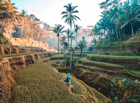 10 TRAVELING TIPS FOR 2019