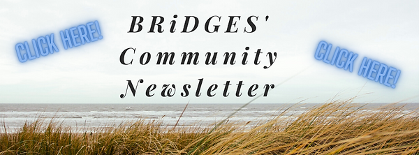 Community Newsletter Facebook Cover.png