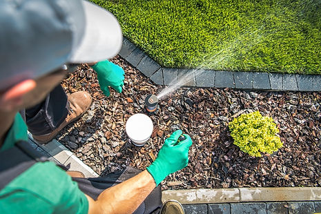 Water auditing  Xeriscape management in Union City CA