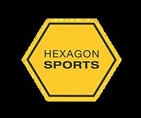 Hexagon _ Junho 2018 (1).png