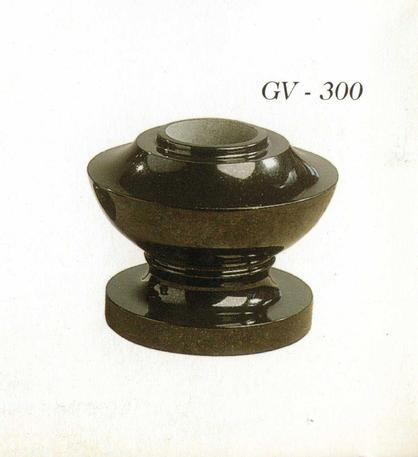 GV300.jpg