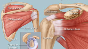 Weak or dysfunctional rotator cuff muscles can be the cause of shoulder pain:
