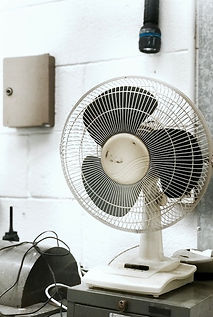 Biggest Fan.jpg