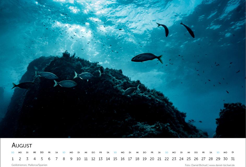 Kalender 202110.png