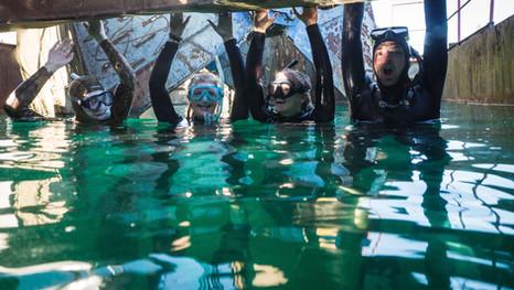 Unterwasserwelten Netzwerk