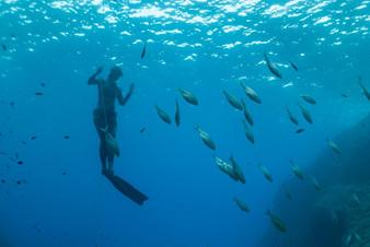 Unterwasserwelten201919resize.jpg