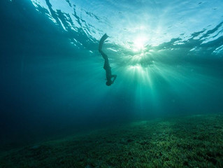 Does freediving exist?