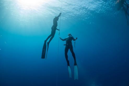 Unterwasserwelten201910resize.jpg