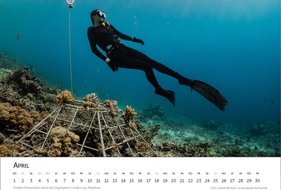 Kalender 20216.png