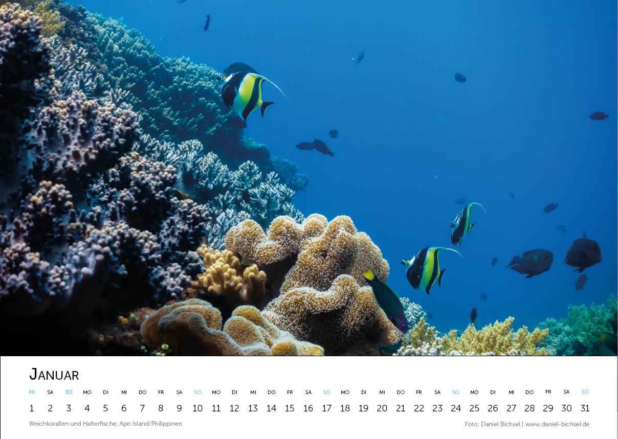 Kalender 20213.png