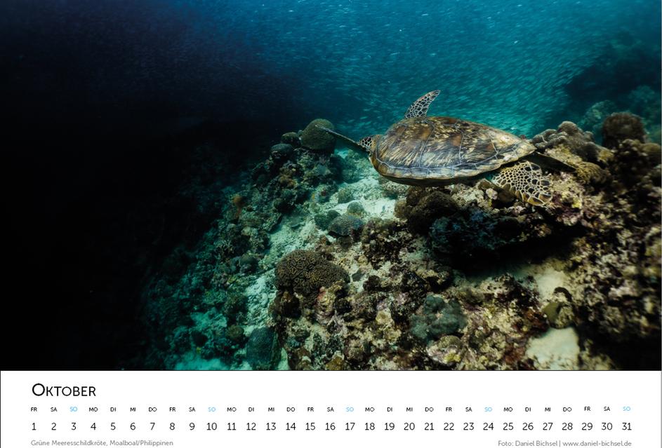 Kalender 202112.png