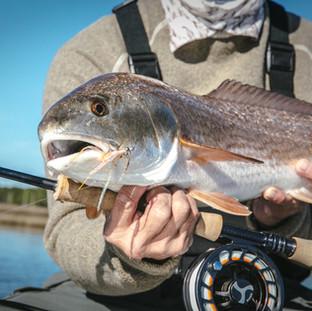 Fishing Charter Santa Rosa