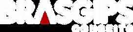 Logotipo Brasgips Conceito - Png.png
