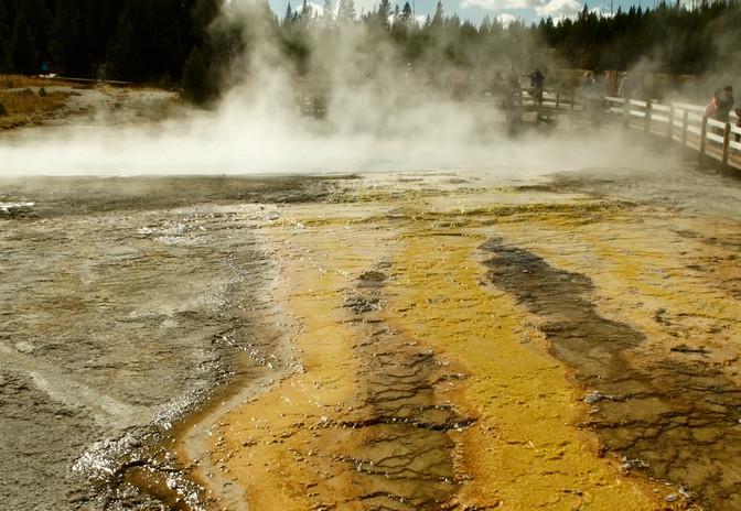 Parc National Yellowstone, USA, NOMADES