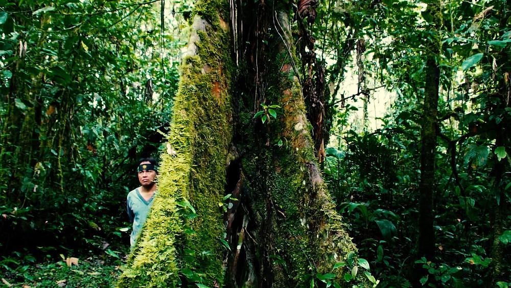 Daniel, notre guide, nous expliquant tout des coutumes Shuars et de la forêt amazonienne