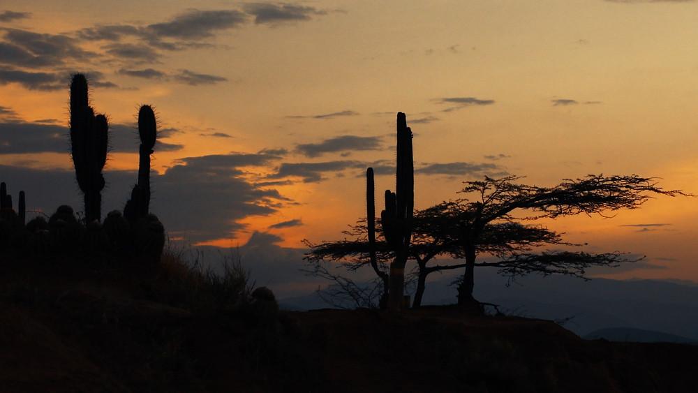 Lever du soleil sur le Désert de la Tatacoa