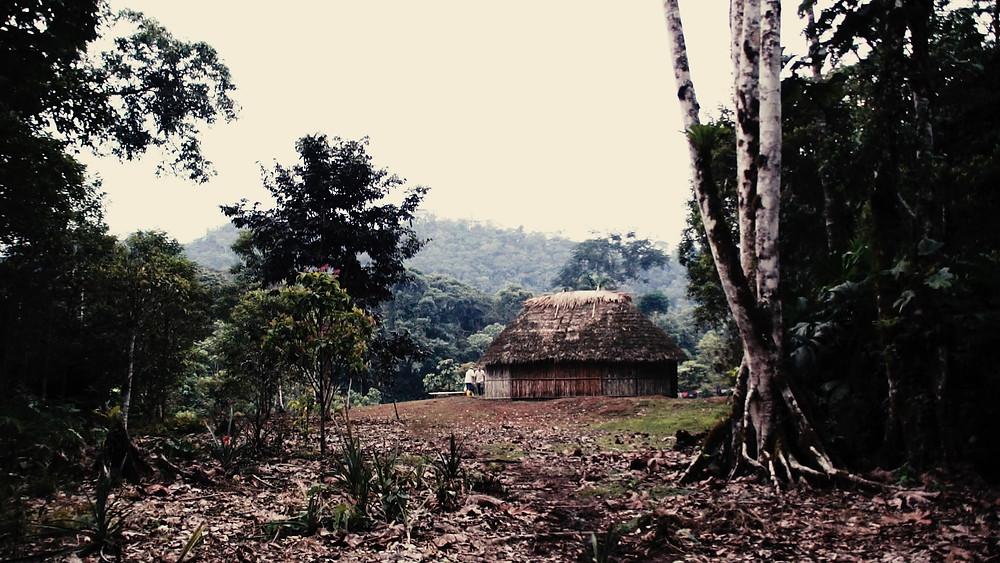 La vue de notre hébergement en arrivant sur le site Macas Équateur Shuars amazonie