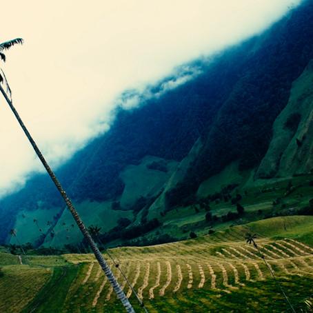 Aventure de tournage: Vallée de Cocora et le Tejo
