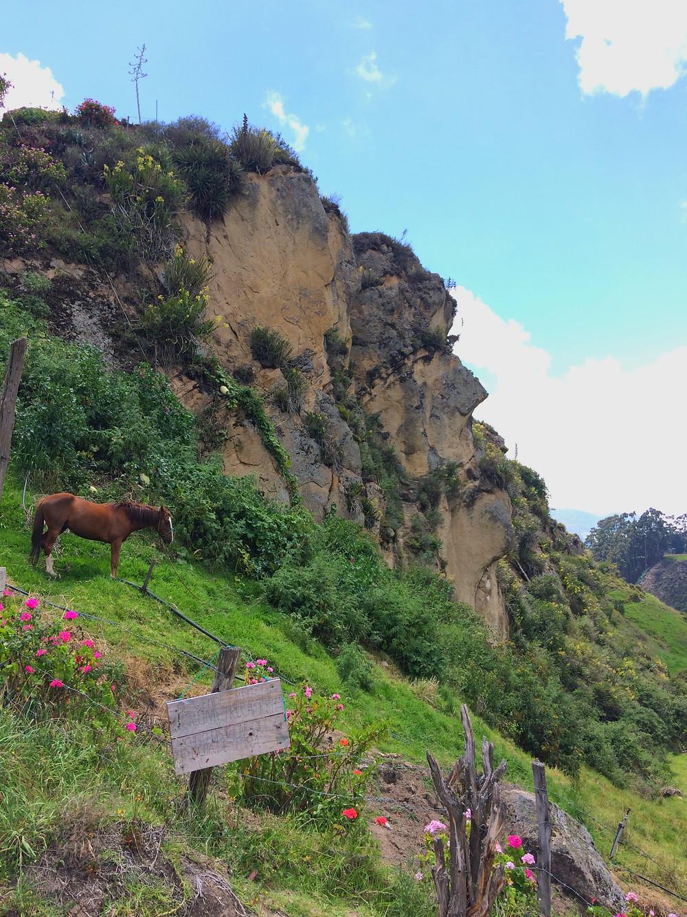 Voyez-vous le visage dans la montagne? :)