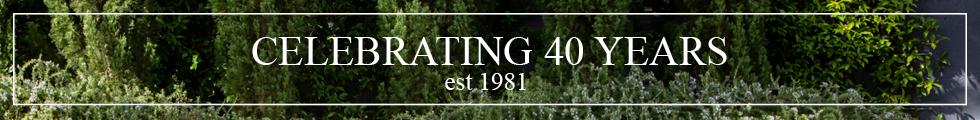 Website Banner_JGLI Anniversary 980 x 120.png