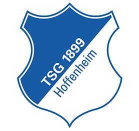 TSG Hoffenheim, Brandstrategy, rep:grid