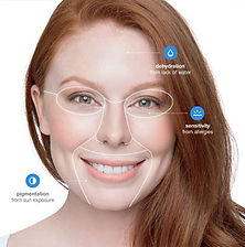 Face Mapping Skin Analysis.jpg
