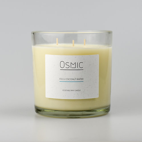 Fig & Coconut Water - 3 Wick Luxury Candle