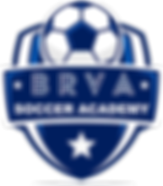 BRVA Logo.png