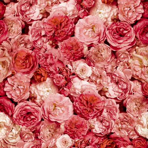 Choice Well Roses Wallpapers