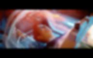Screen Shot 2019-05-01 at 11.25.06 PM.pn