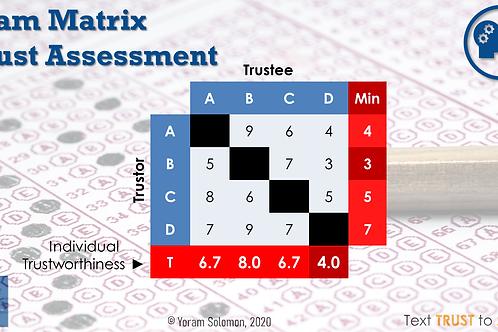 Team Matrix Trust Assessment