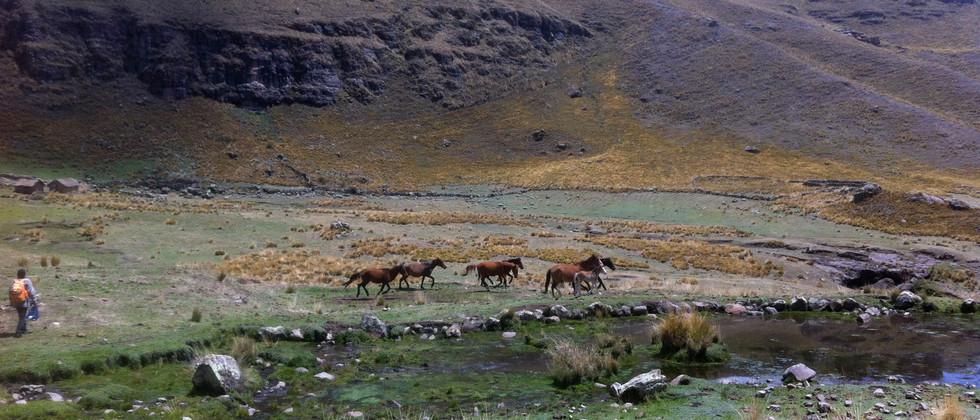 Sacred Valley Peru - Apus
