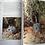 Thumbnail: The Complete Book Of Australian Mammals