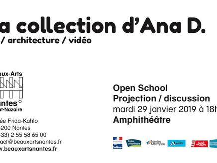 La Collection d'Ana D. - Ecole des Beaux Arts de Nantes - Saint Nazaire - 2019