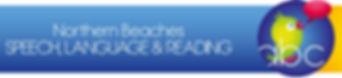 NBSL&R logo header_edited.jpg
