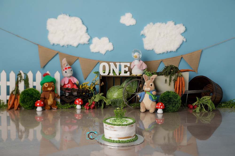 Peter Rabbit Cake Smash